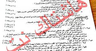 اسئلة اللغة العربية للصف الثالث المتوسط نازحين الموصل 2017 الدور الاول