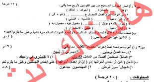 اسئلة اللغة العربية للصف السادس الابتدائي الدور الثاني 2017