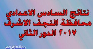 نتائج السادس الاعدادي محافظة النجف الاشرف 2017 الدور الثاني