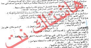 اسئلة اللغة العربية للصف الثالث المتوسط نازحين الموصل الدور الثاني 2017