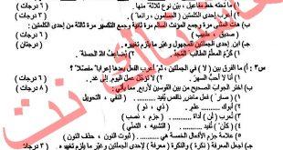 اسئلة اللغة العربية للصف السادس الابتدائي الدور الاول 2018