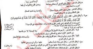 اسئله اللغة العربية للصف السادس الاعدادي الدور الثاني 2019
