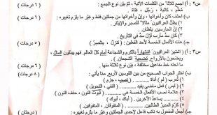 اسئلة اللغة العربية السادس الابتدائي الدور الثاني 2019