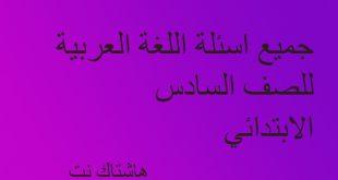 جميع اسئلة للغة العربية للسنوات السابقة للصف السادس الابتدائي